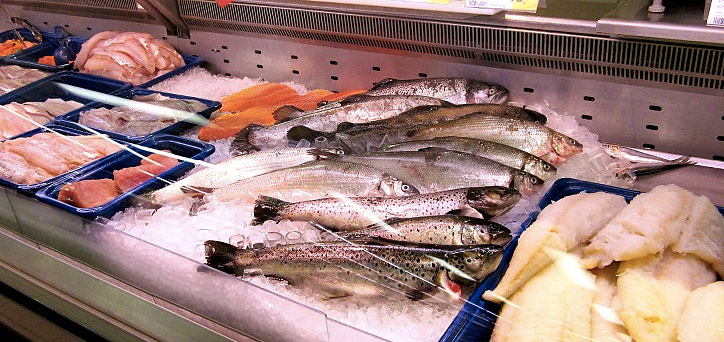 про рыбу 2017 год где толстолоб